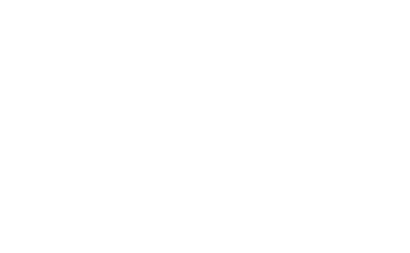 Wordpress Maintenance Logo